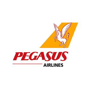 Пегасус (GASA)