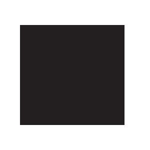Lineage2 (Russia)